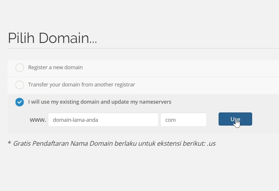 I will use my existing domain and update my nameservers