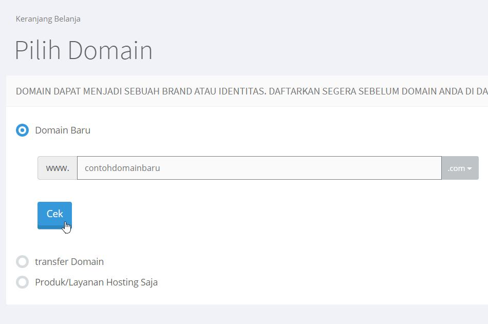 Nama domain baru